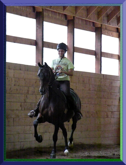 Horse back riding lessons at RMD Stables